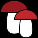 Распознавание грибов с фотографий