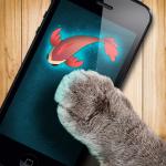 Рыбка для кошки игра