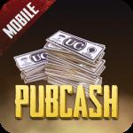 Pubcash - бесплатные UC