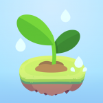 Focus Plant
