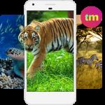 Картинки на Телефон Животные