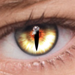 FoxEyes