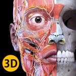 Анатомия - 3D Атлас