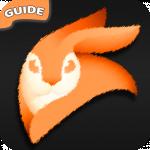 Tips Video Leap; Editor Enlight Guide