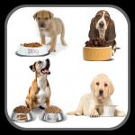 Dog Food Recipes - Homemade Dog Food Recipes