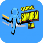 Guide for Samurai Flash 3d
