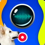 переводчик собак