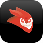 VideoLeap Editor Mini